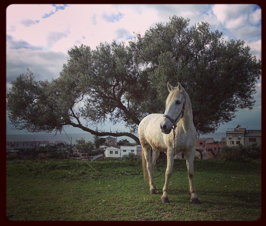 Nerja, Spain.